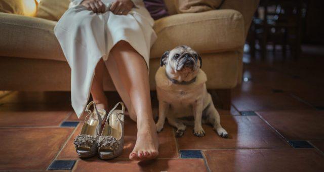 Reportaje fotografico boda María y Juan Carlos